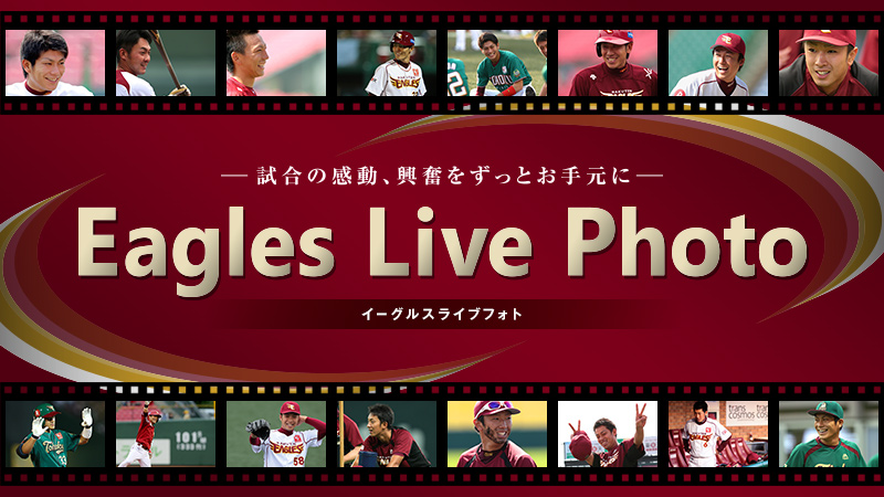 Eagles Live Photo